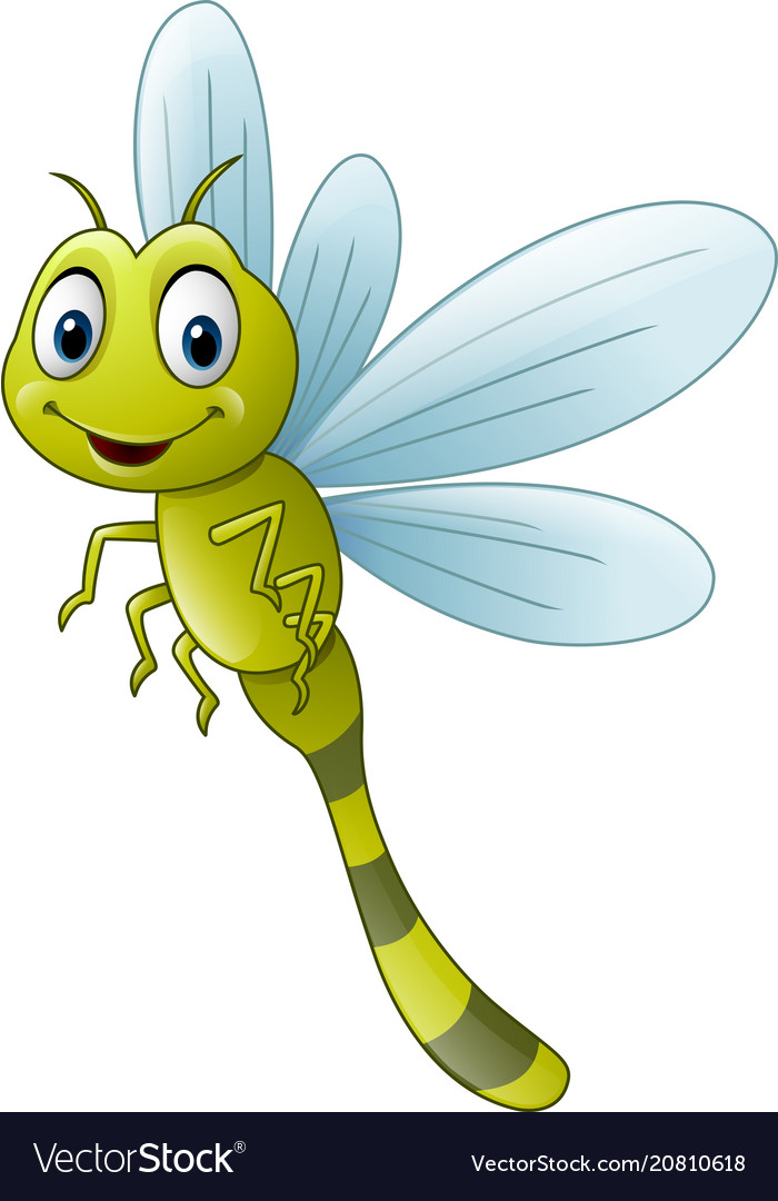 Cartoon Dragonfly Royalty Free Vector Image Vectorstock
