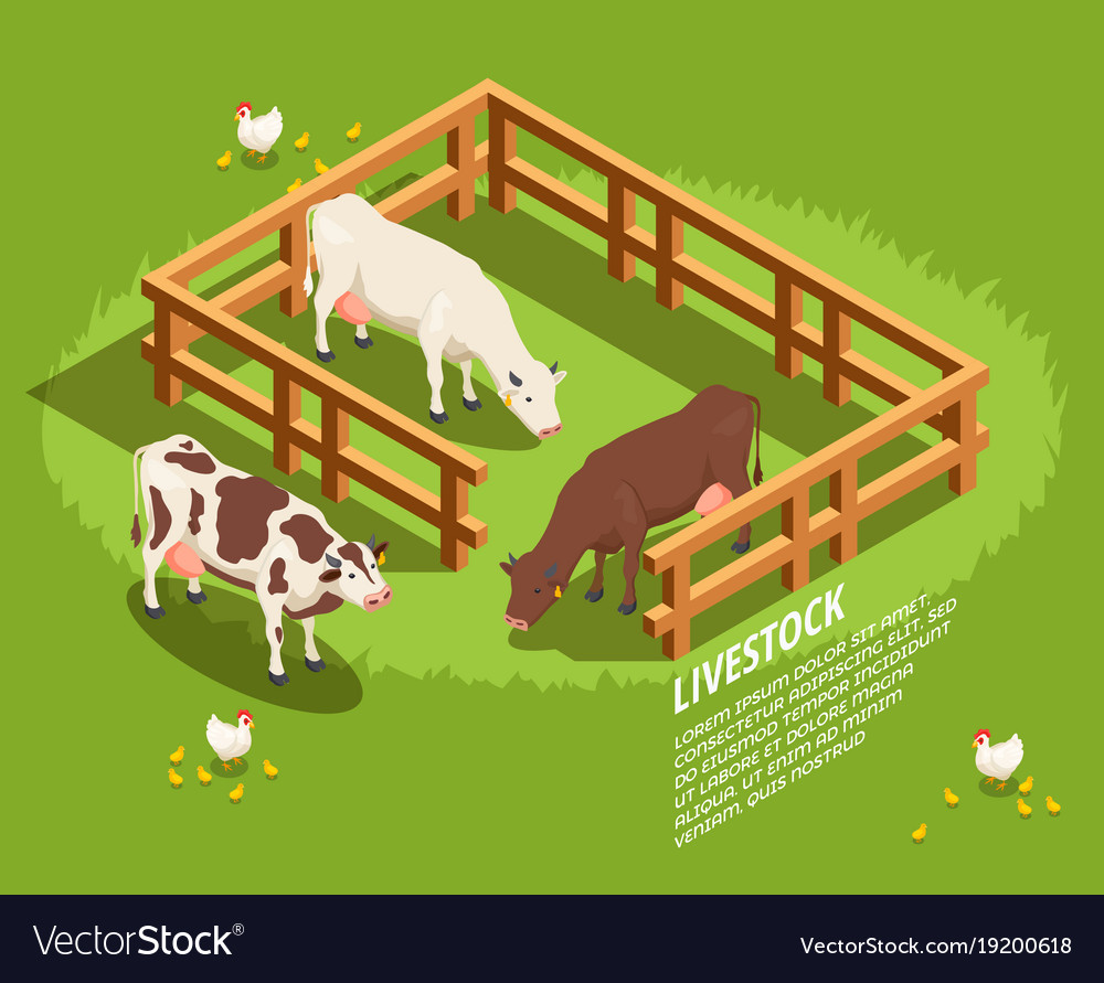 Livestock isometric composition