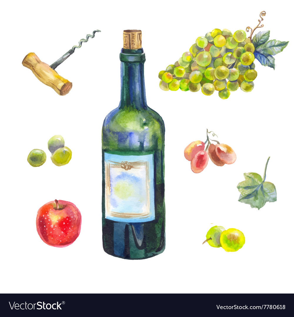 Watercolor wine collection