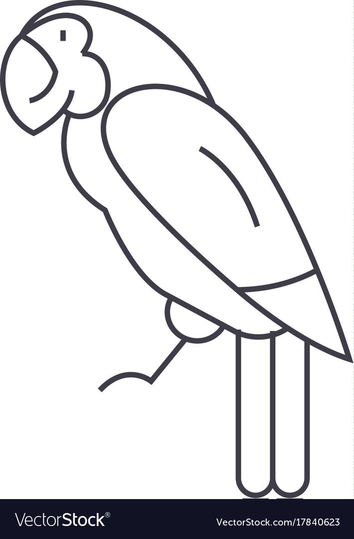 Parrot line icon sign on vector image