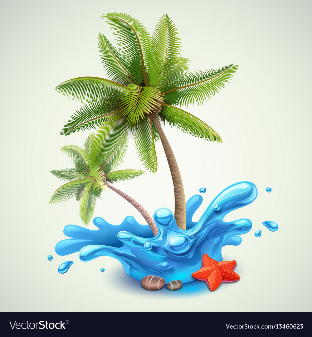Water splash with palms