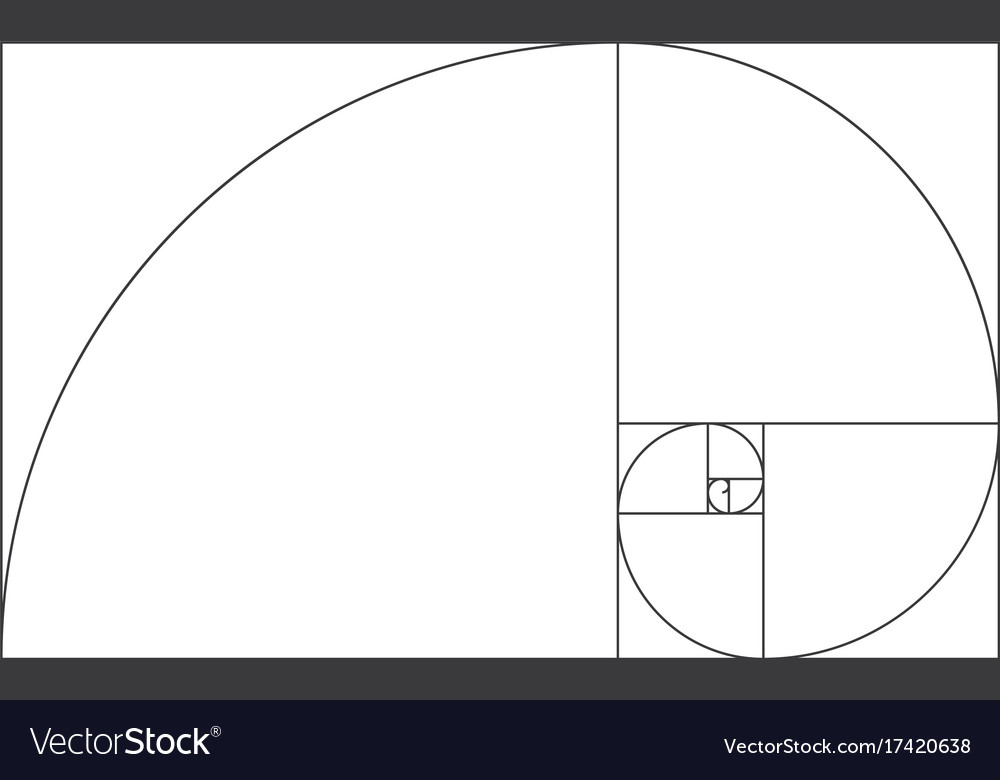 golden ratio template fibonacci royalty free vector image rh vectorstock com golden ratio vector illustrator golden ratio spiral vector