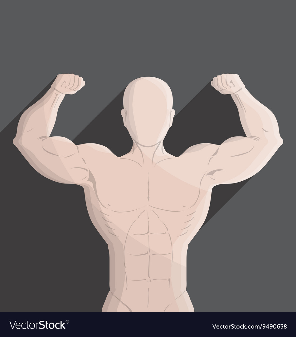 Male muscle gym grey vector image