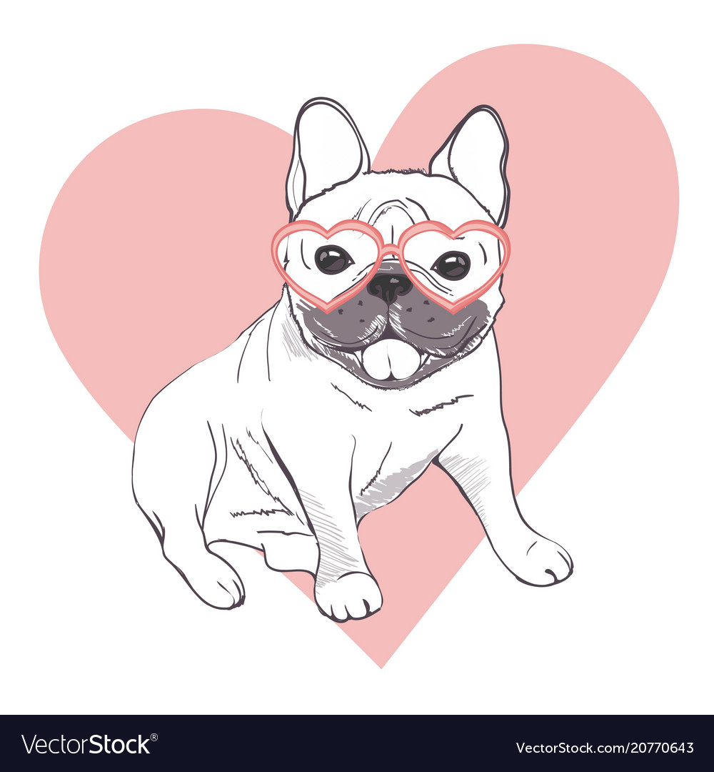 Funny Puppies Of French Bulldog Funny French Vector Image