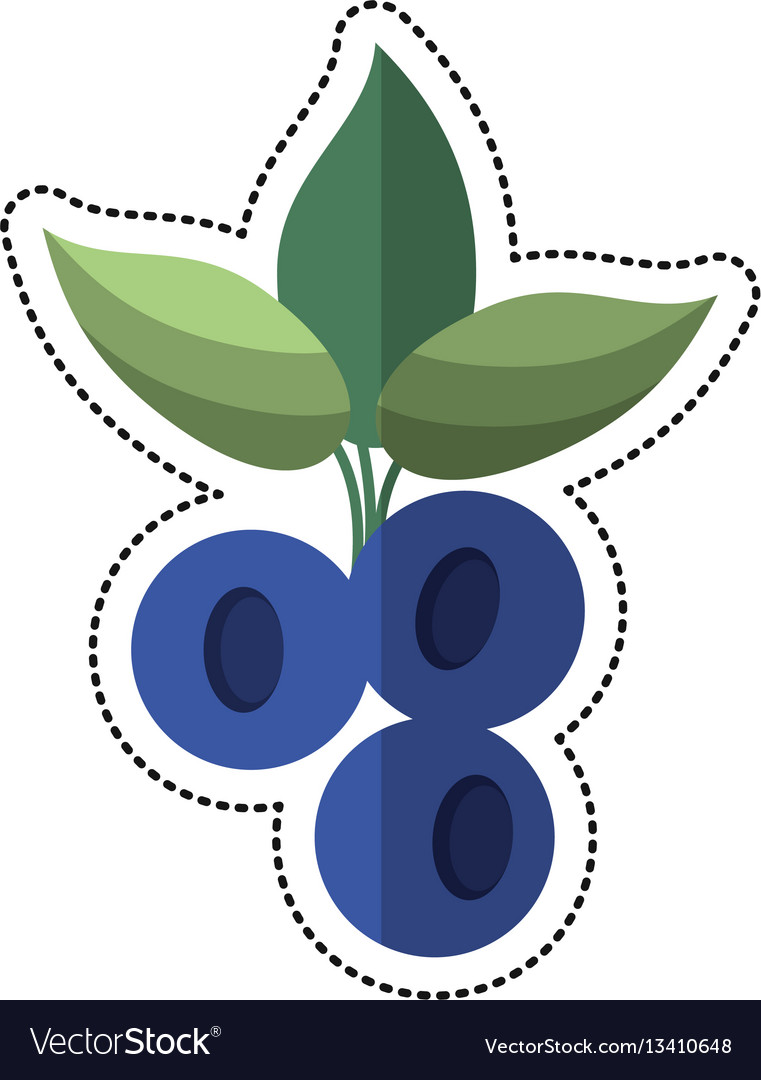 Cartoon blueberry leaves diet icon vector image