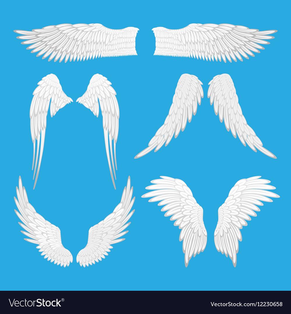 Angel Eagle Bird Wings