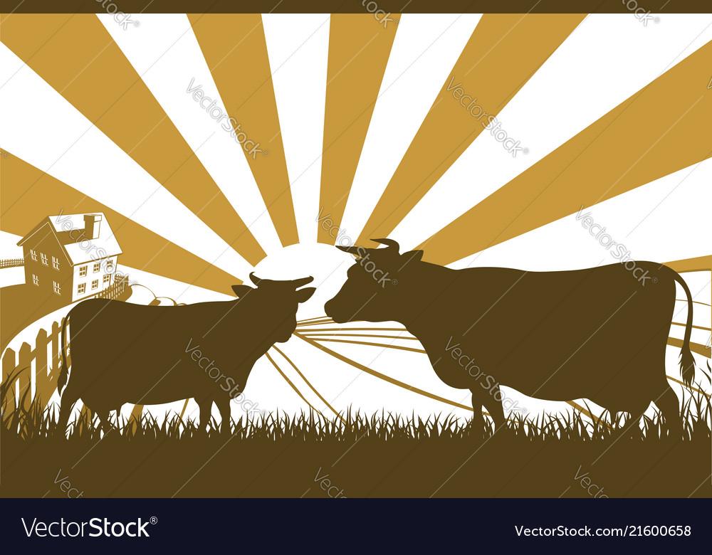 Sunrise cow farm landscape