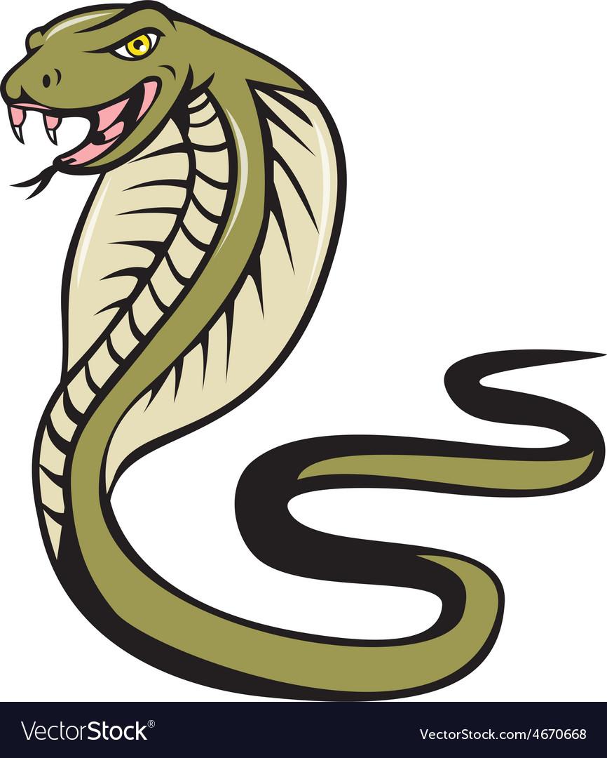 Cobra Viper Snake Attacking Cartoon vector image