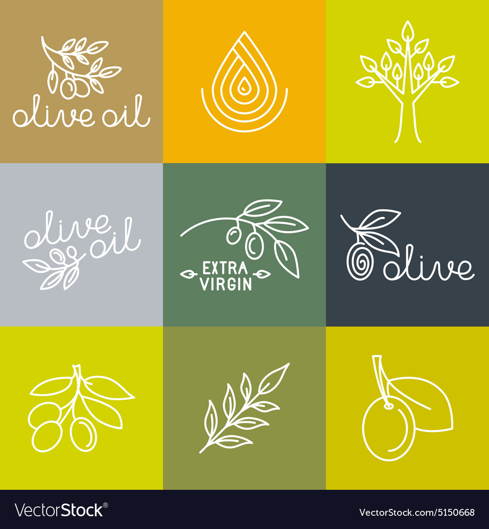 Olive oil icons and logo design elements vector image