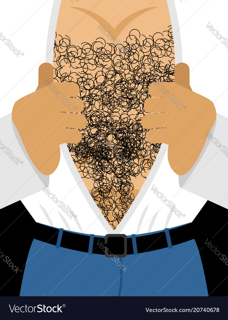 Male hairy torso mens muscular chest takes off vector image