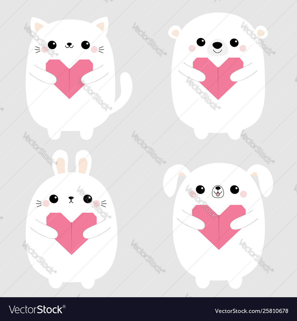 White rabbit cat kitten hare bear dog puppy head
