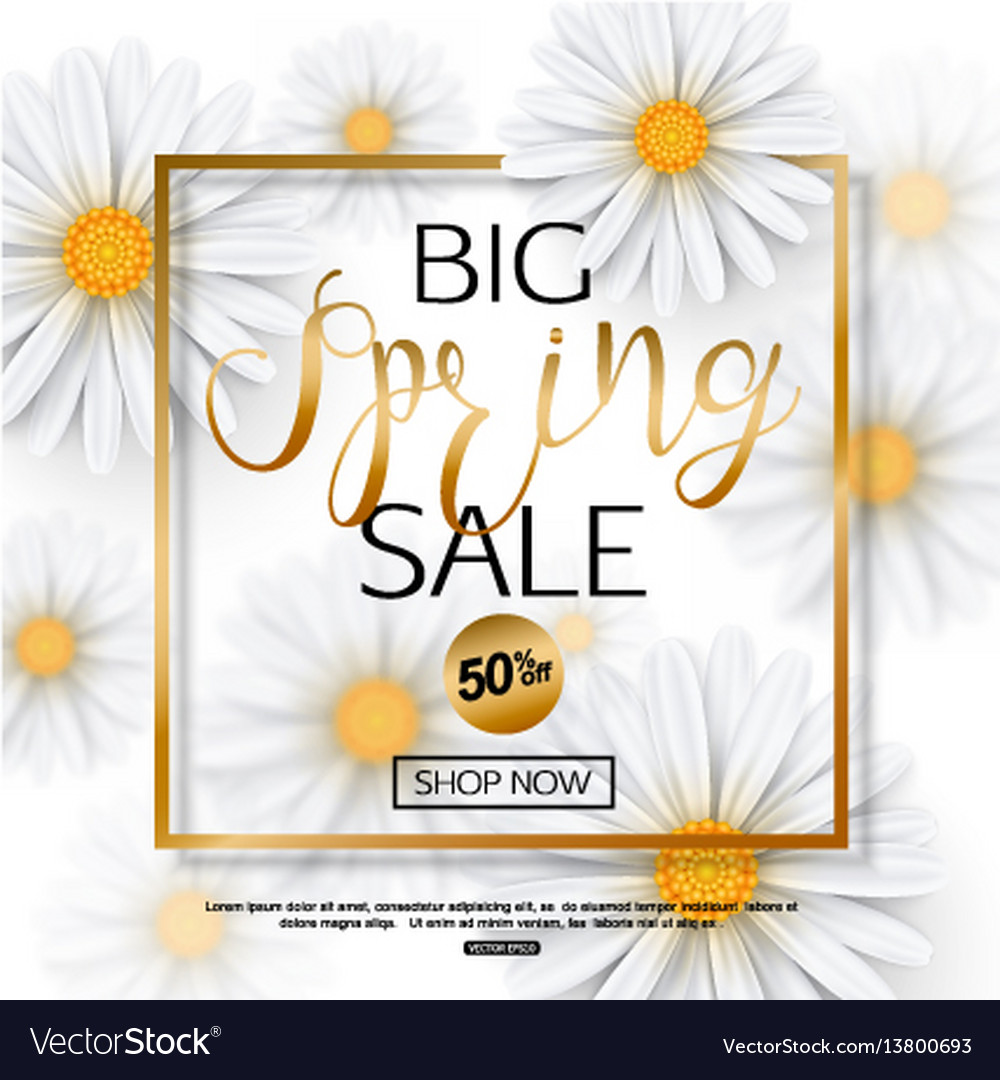 Spring sale banner with realistic chamomile flower