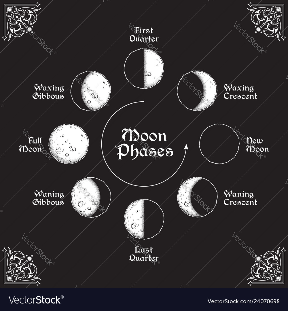 Antique style moon phases circle