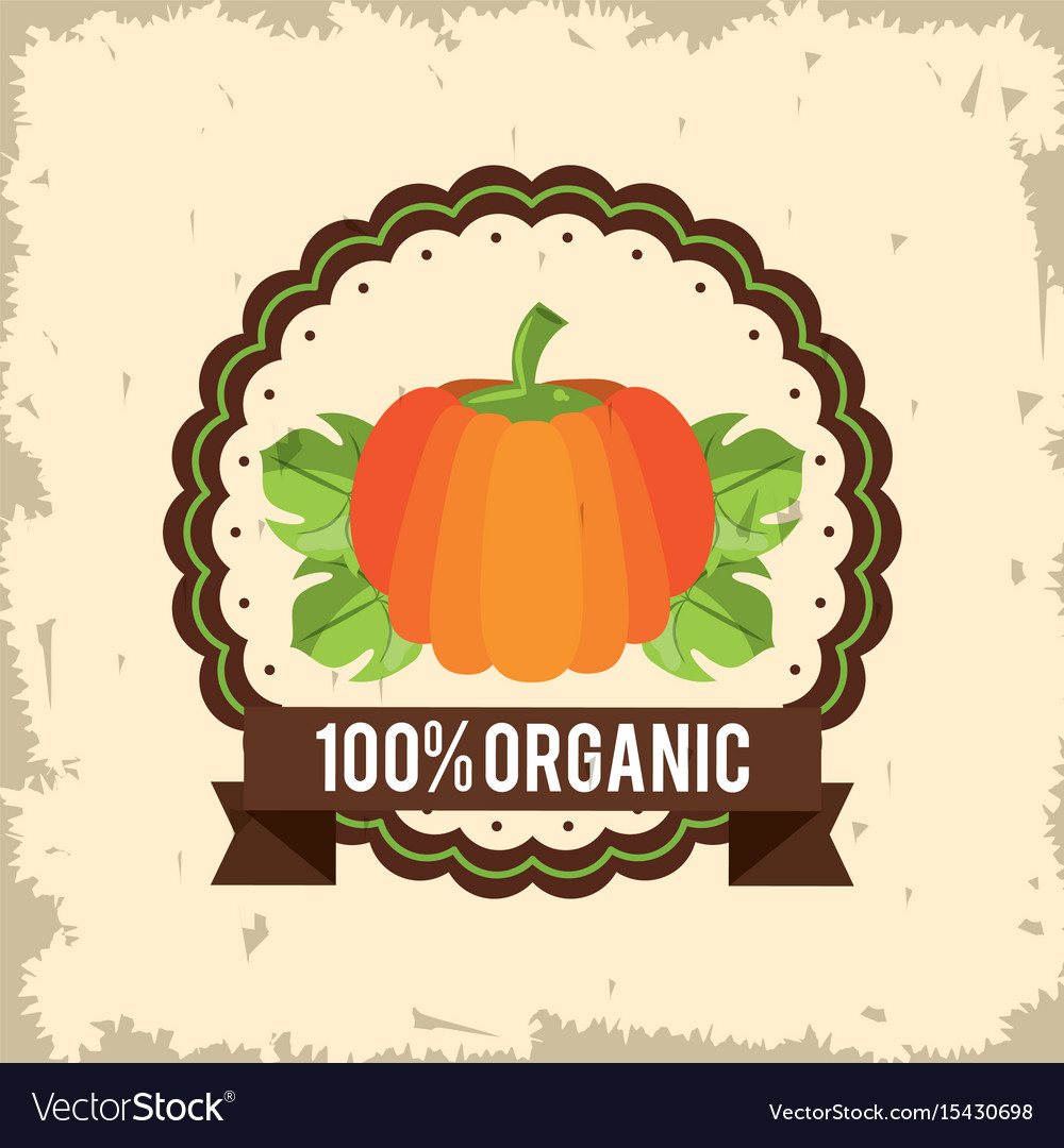 Colorful logo of organic food with pumpkin