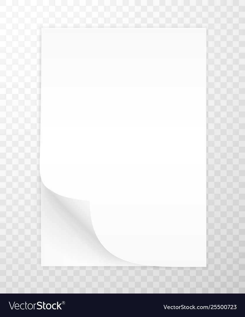 Blank a4 sheet white paper with shadow