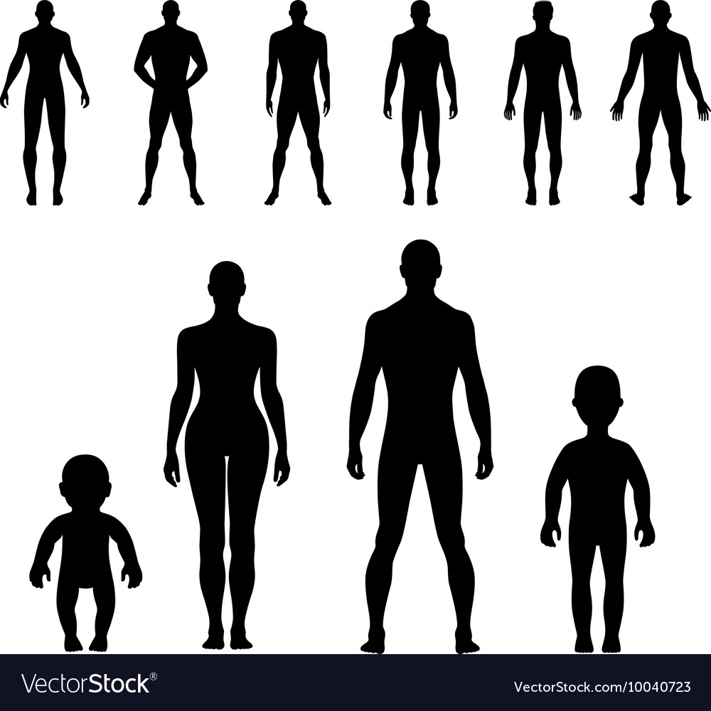 human silhouette royalty free vector image vectorstock rh vectorstock com human silhouette vector ai human silhouette vector png