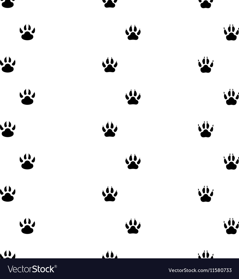 Black footprints of dogs seamless track vector image