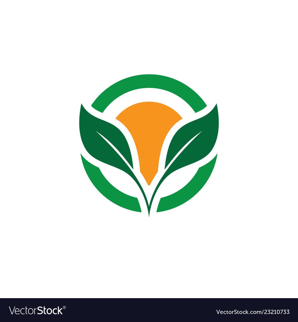 Circle leaf eco logo