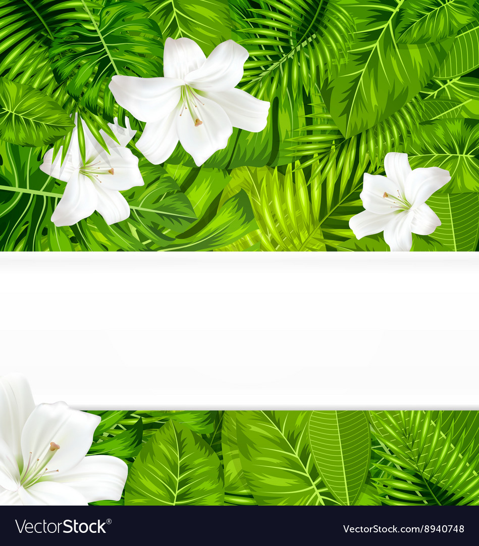 Frame branch tropical leaves and white flowers