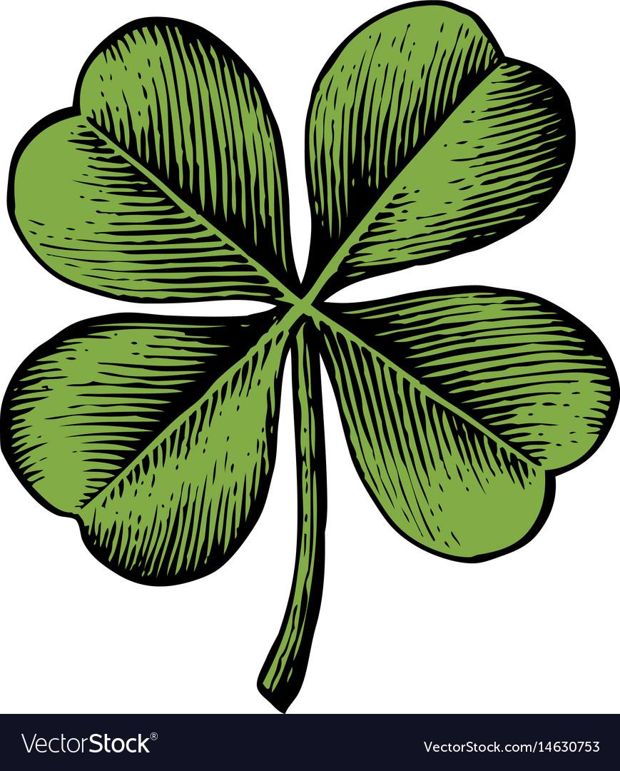 Clover with four leaf - vintage engraved