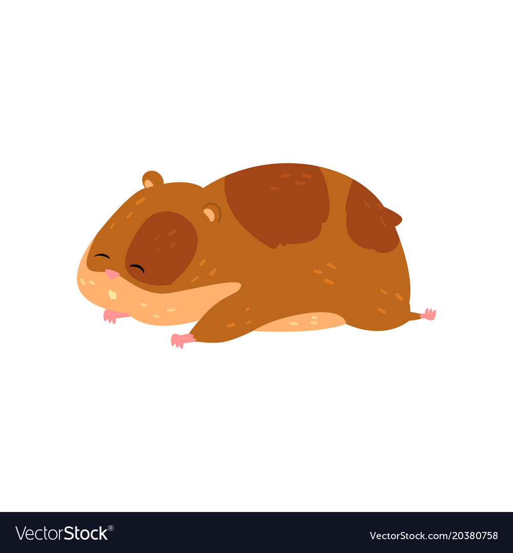 Cute cartoon hamster character sleeping funny