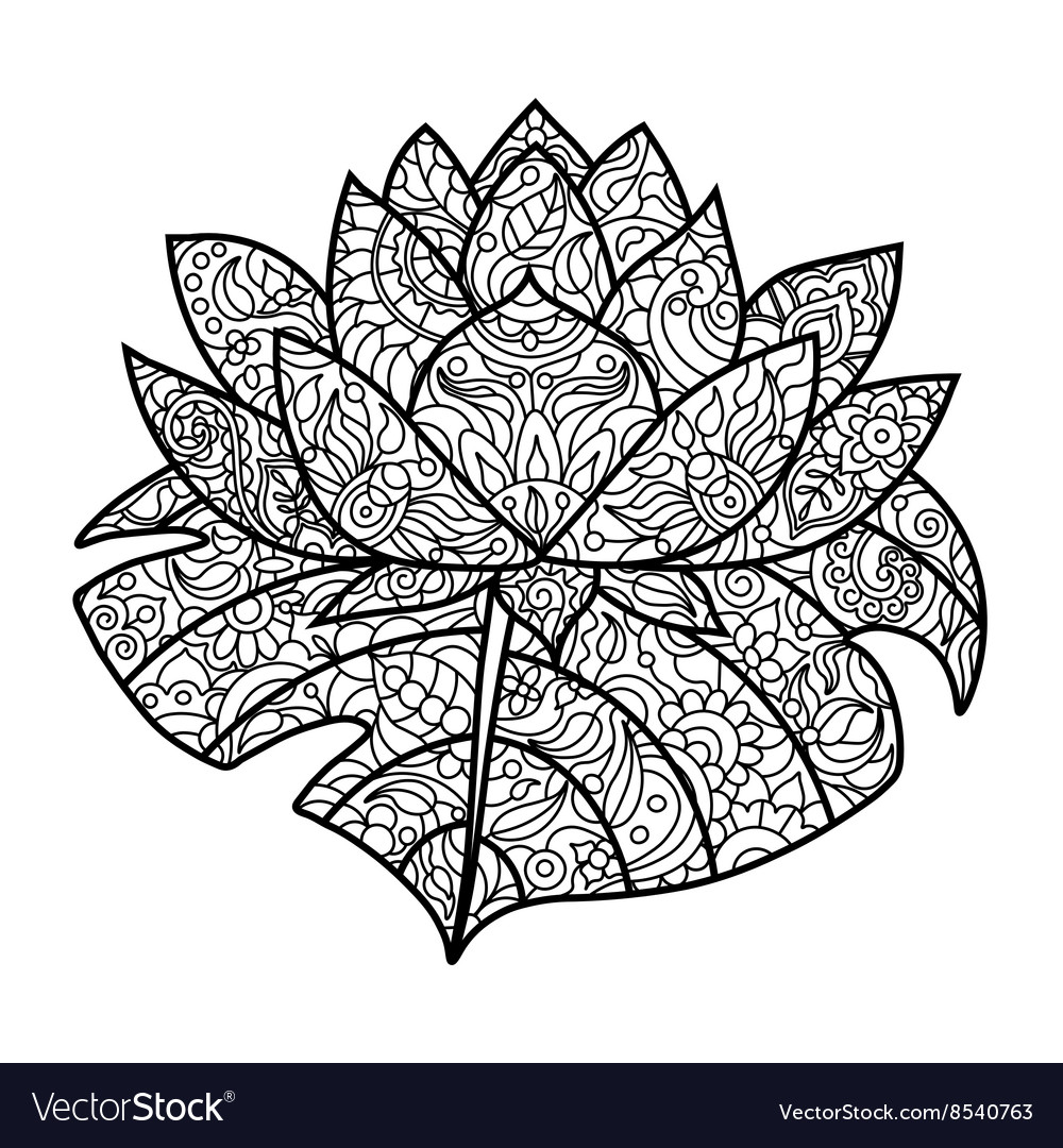 - Lotus Flower Coloring Book For Adults Royalty Free Vector