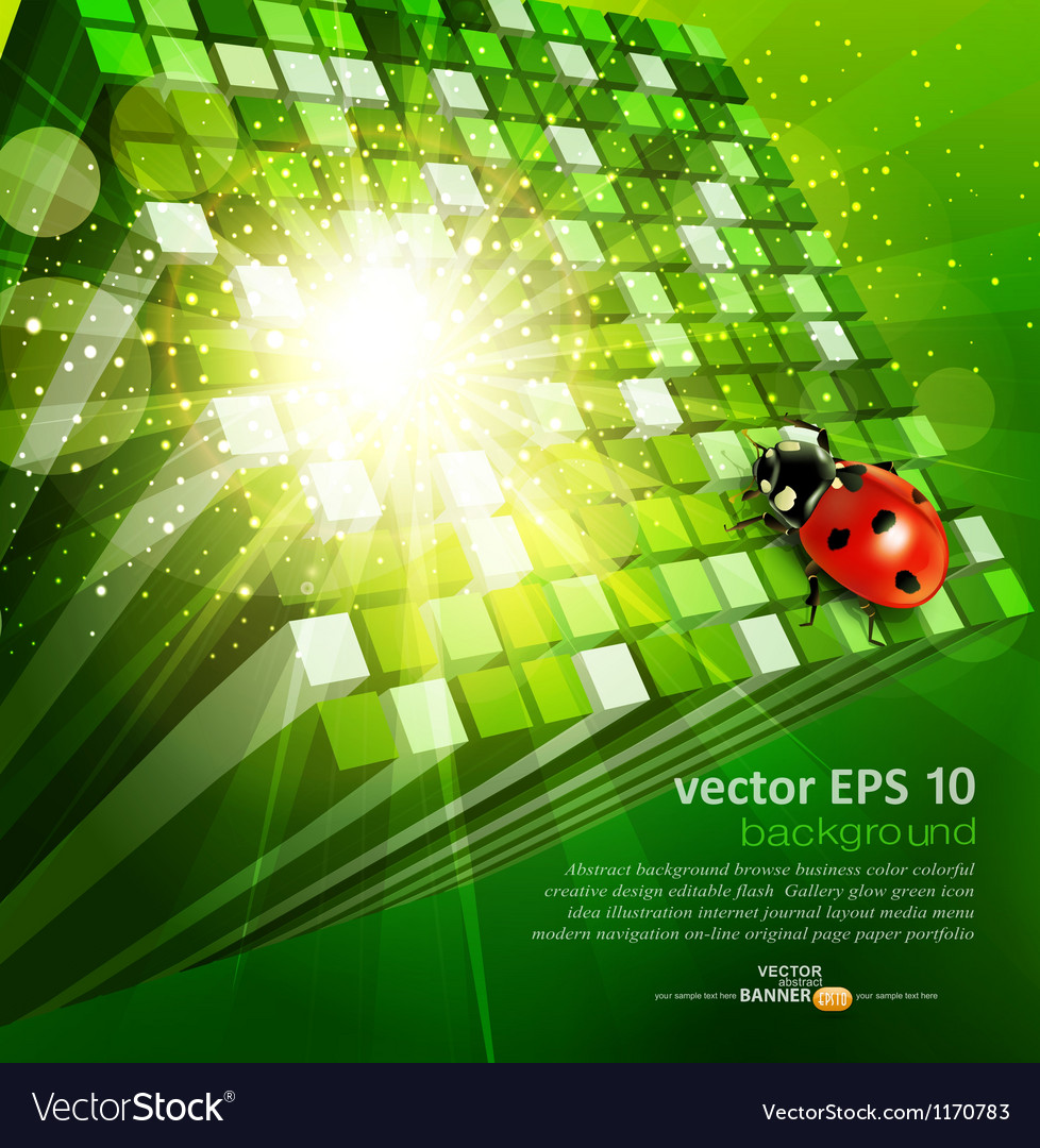 Green cubes and ladybug vector image