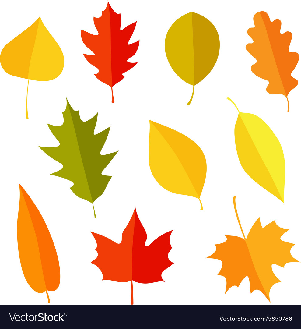 Autumn leaves icon set