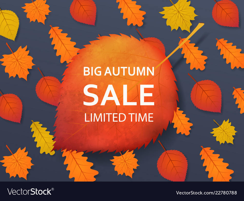 Autumn sale discount background with a red yellow