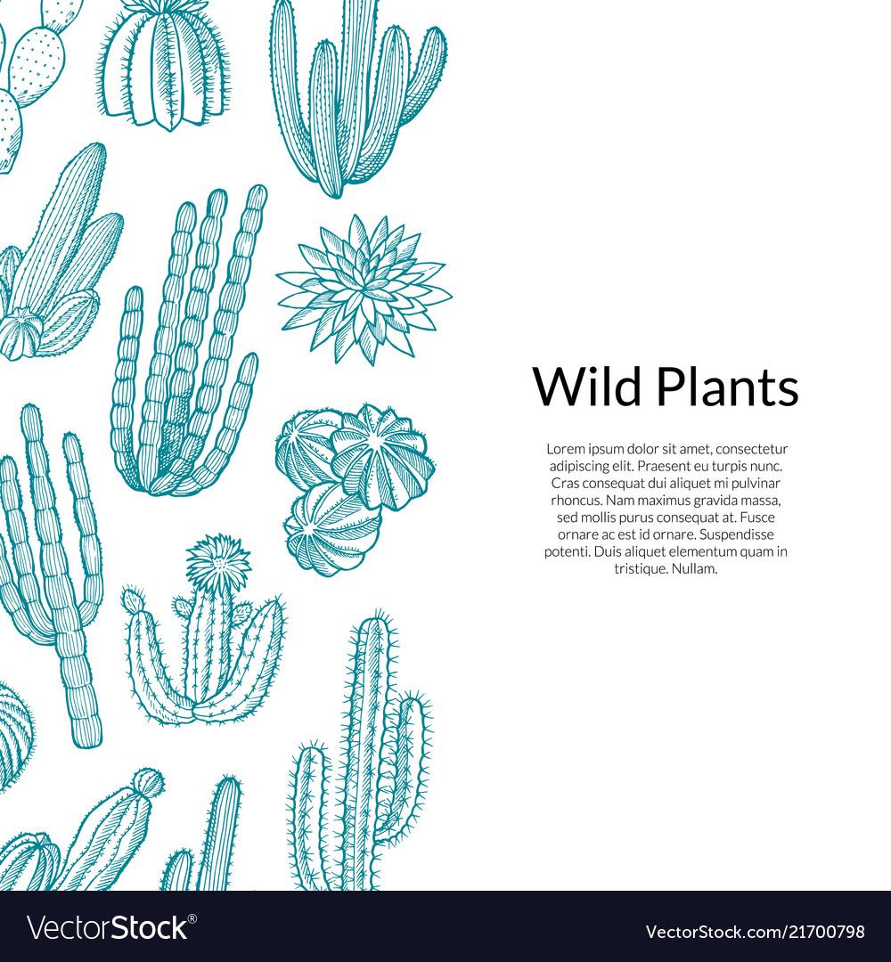 Cactus pattern hand drawn wild cacti