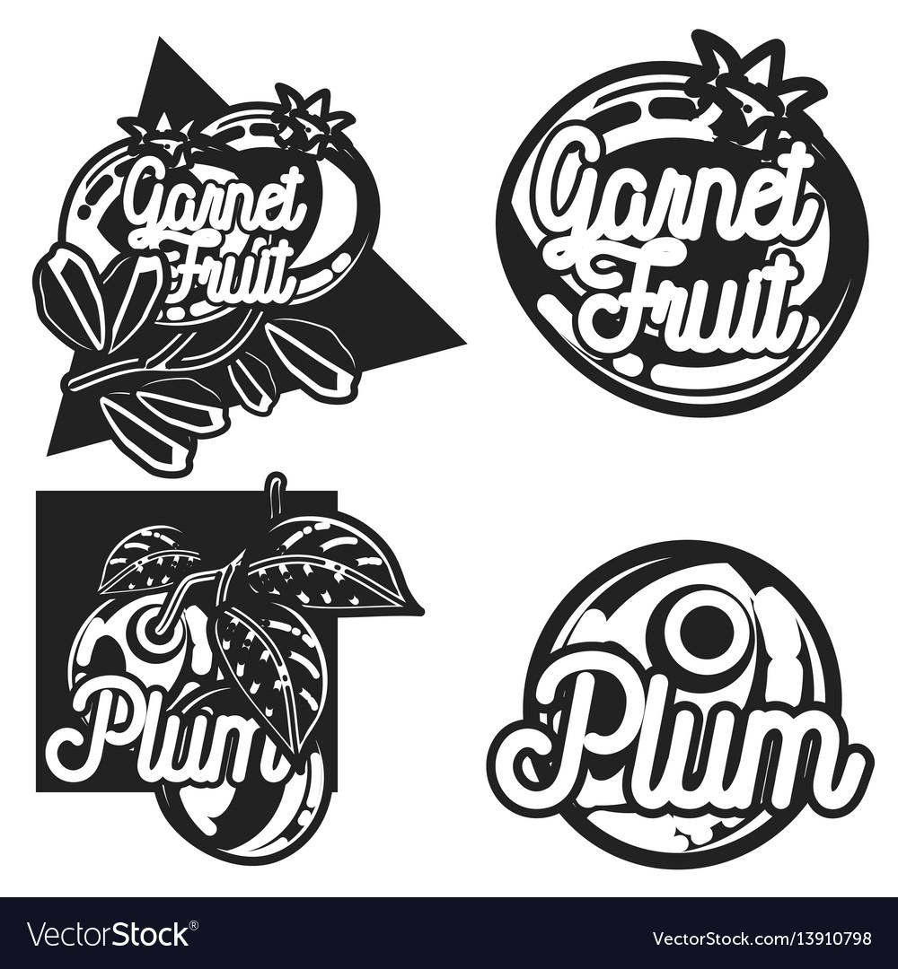 Color vintage fruit emblems