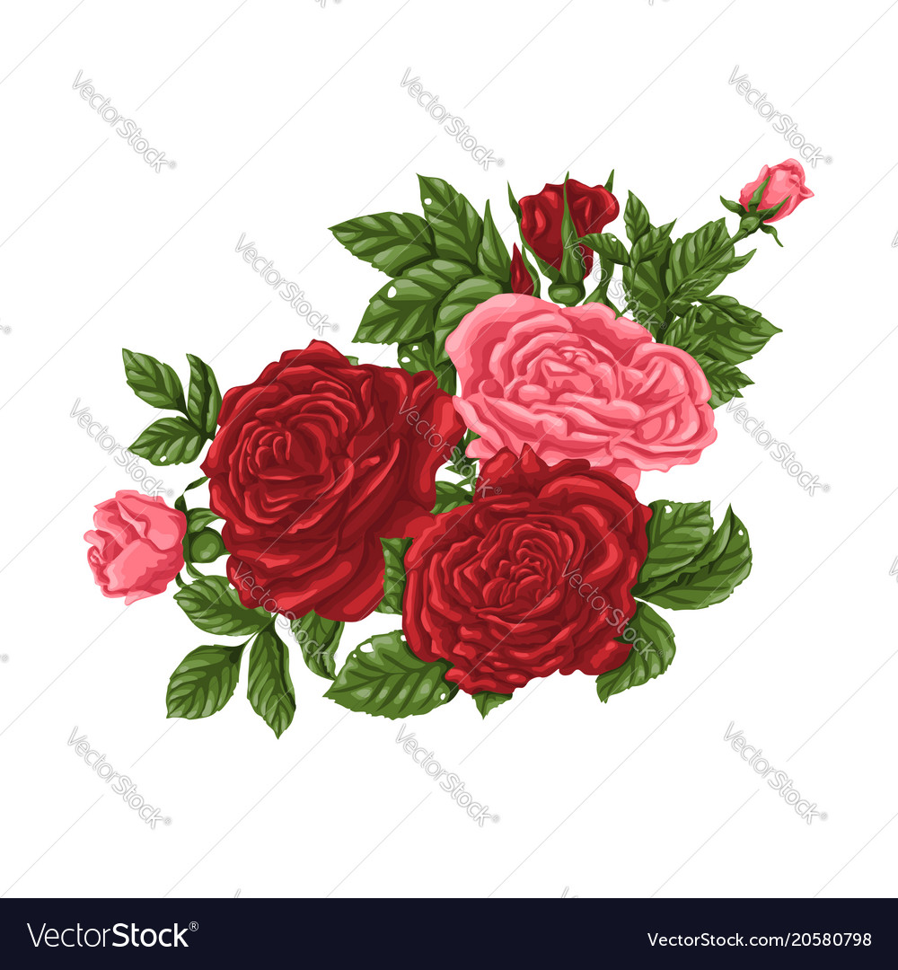 Set Of Pink And Red Roses Bouquets Flowers And Vector Image