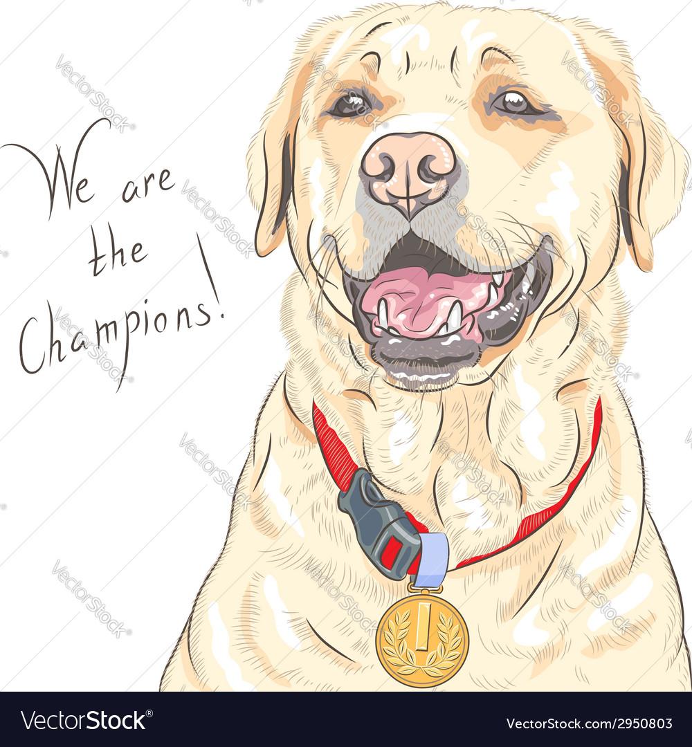 Smiling happy yellow dog breed Labrador Retriever vector image