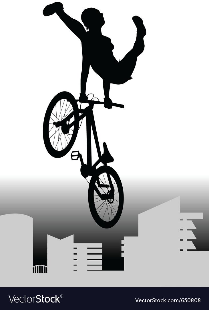 Bmx rider vector image