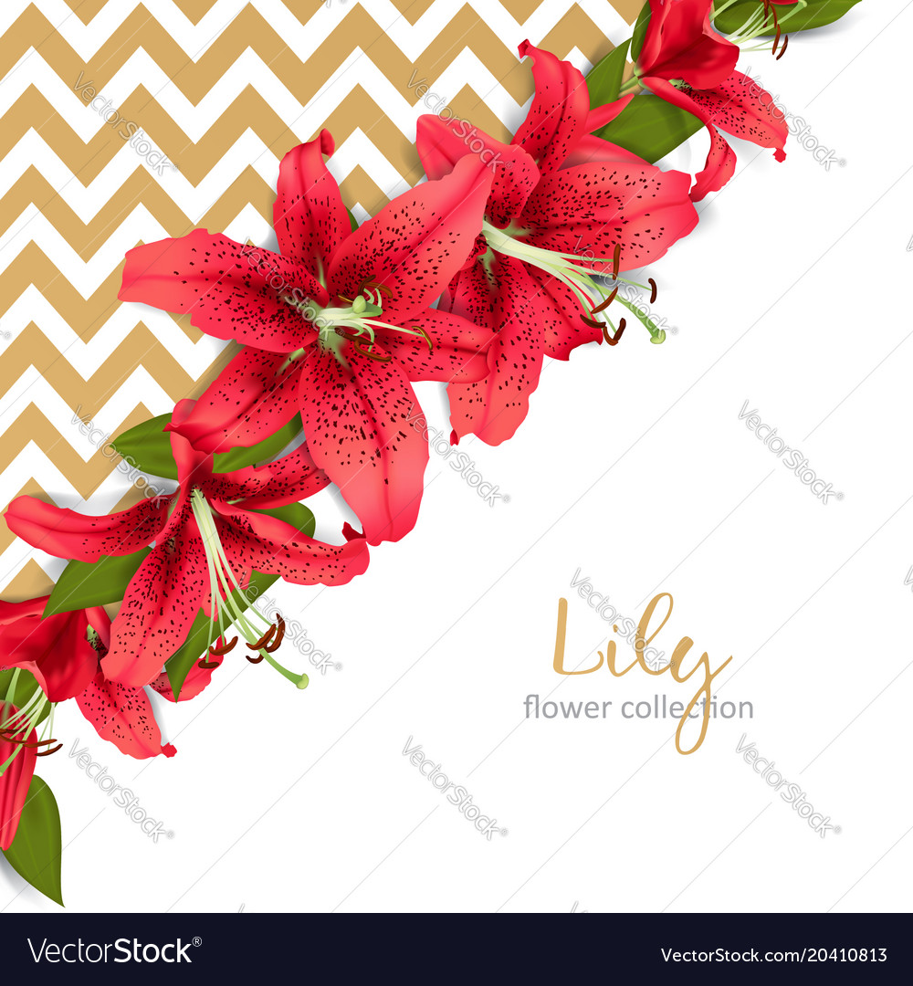 Wedding invitation with lily flowers Royalty Free Vector
