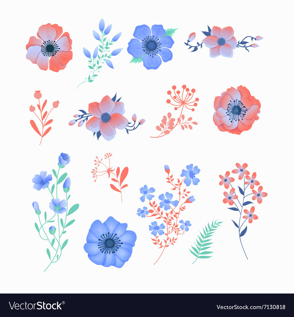Floral Set of Beautiful Flowers and Leaves