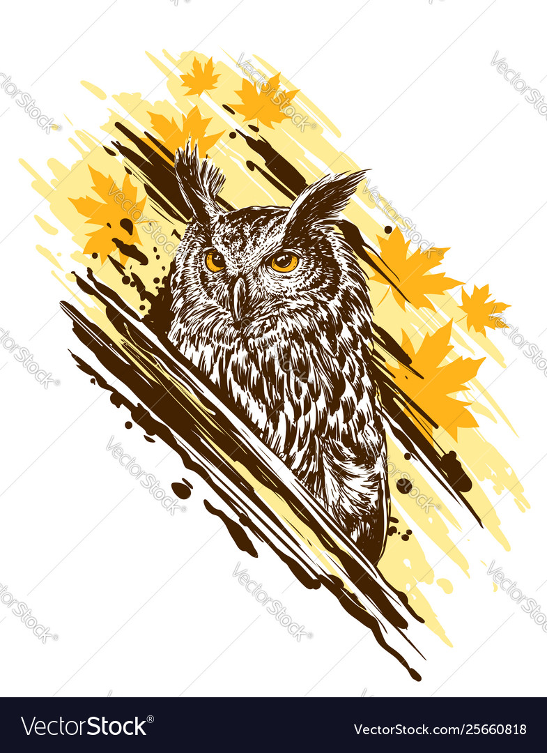 Graphic detailed colorful owl with yellow eyes