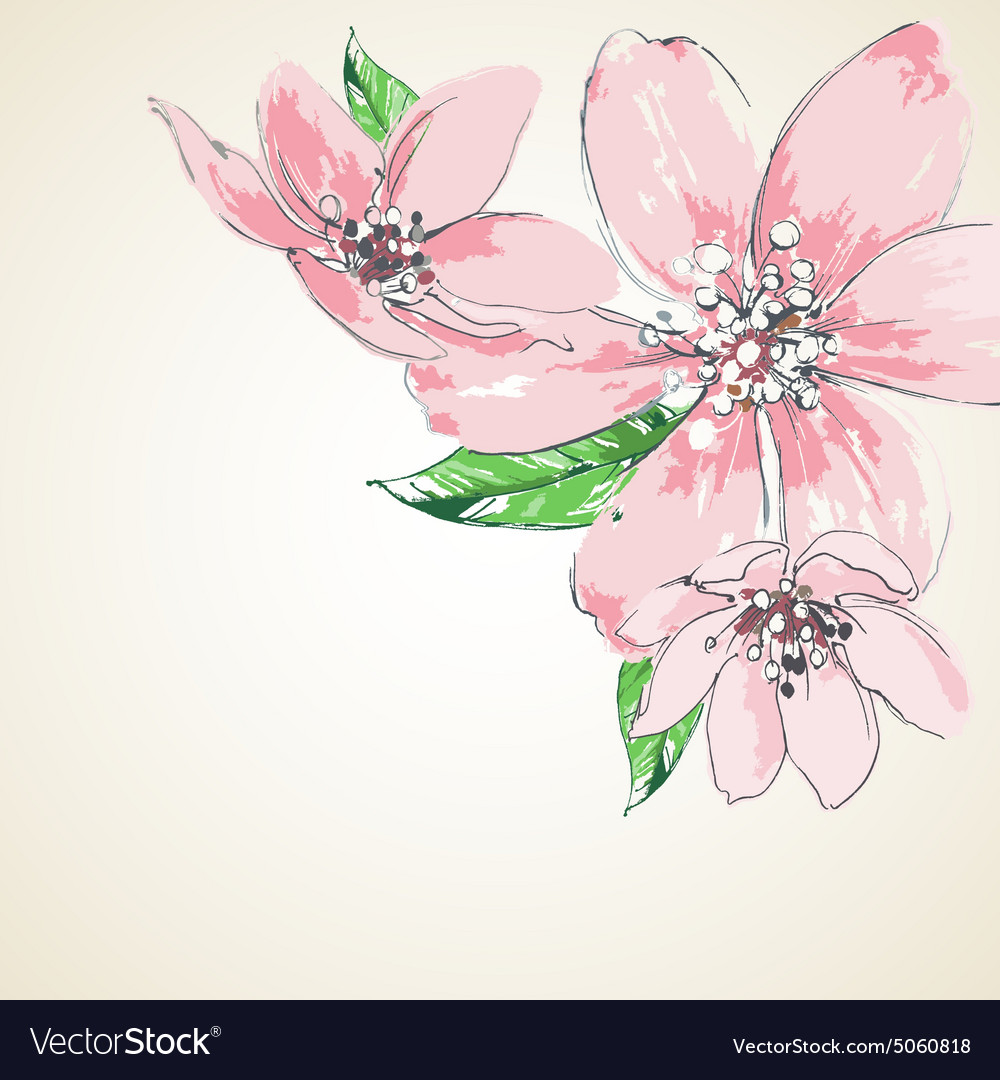 Pink Flowers Background Corner Decoration Vector Image