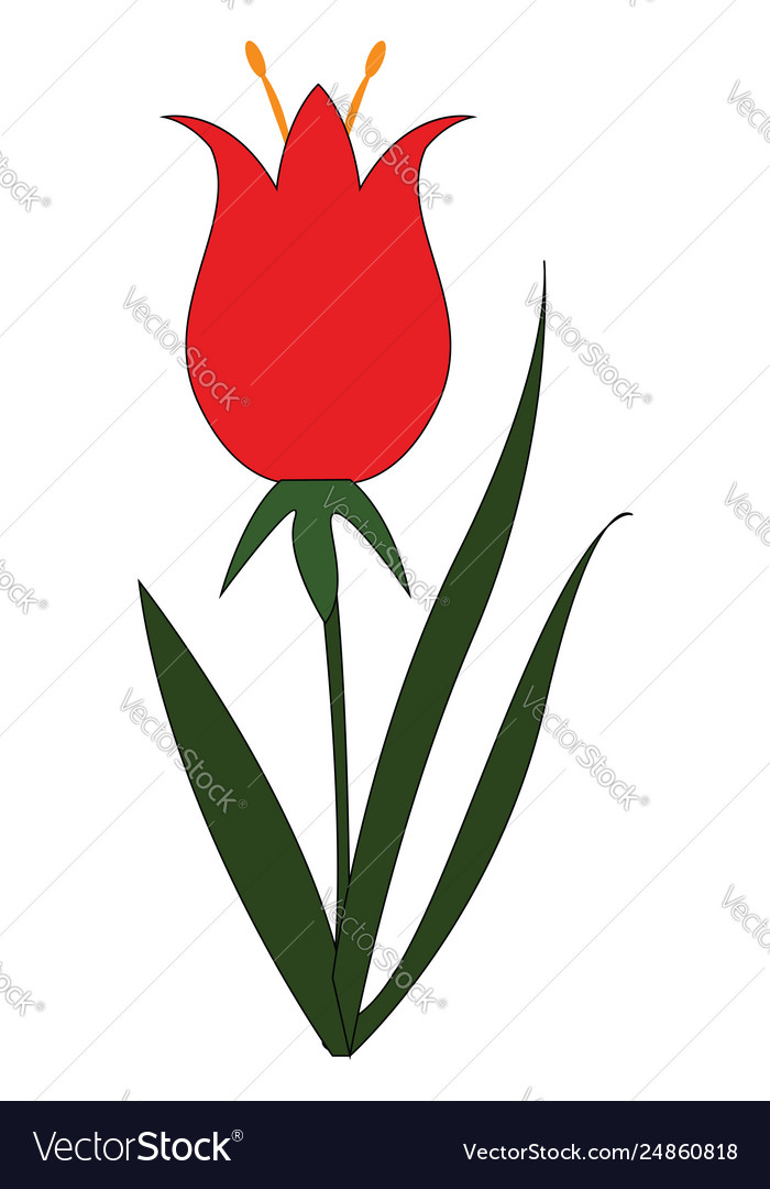 Simple on white background a red flower with