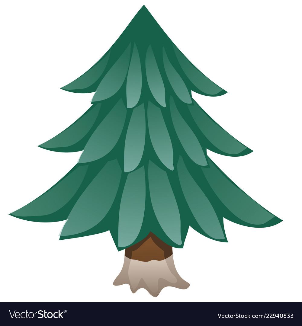 Cartoon spruce isolated on white background