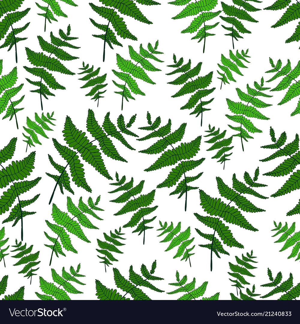 Green fern leaf seamless wild forest pattern white