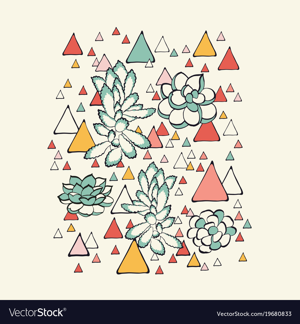 Succulent and triangles pattern