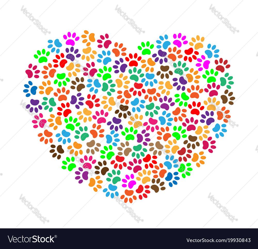 Heart of colorful paw prints vector image