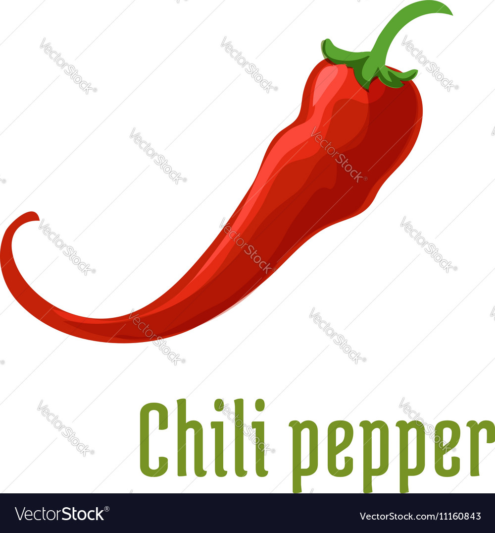 Hot red chili or cayenne pepper icon