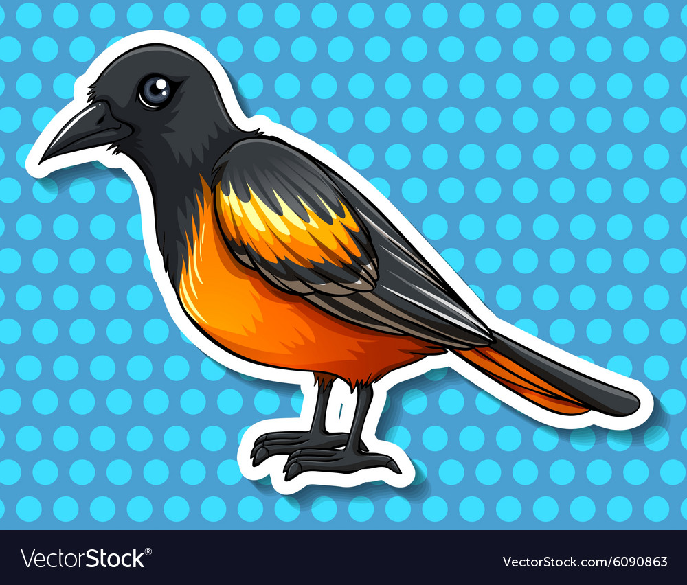 Bird with black and yellow feather