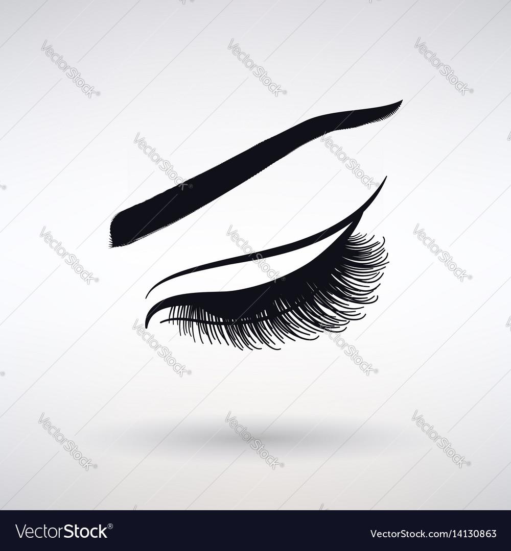 Icon female long eyelashes vector image