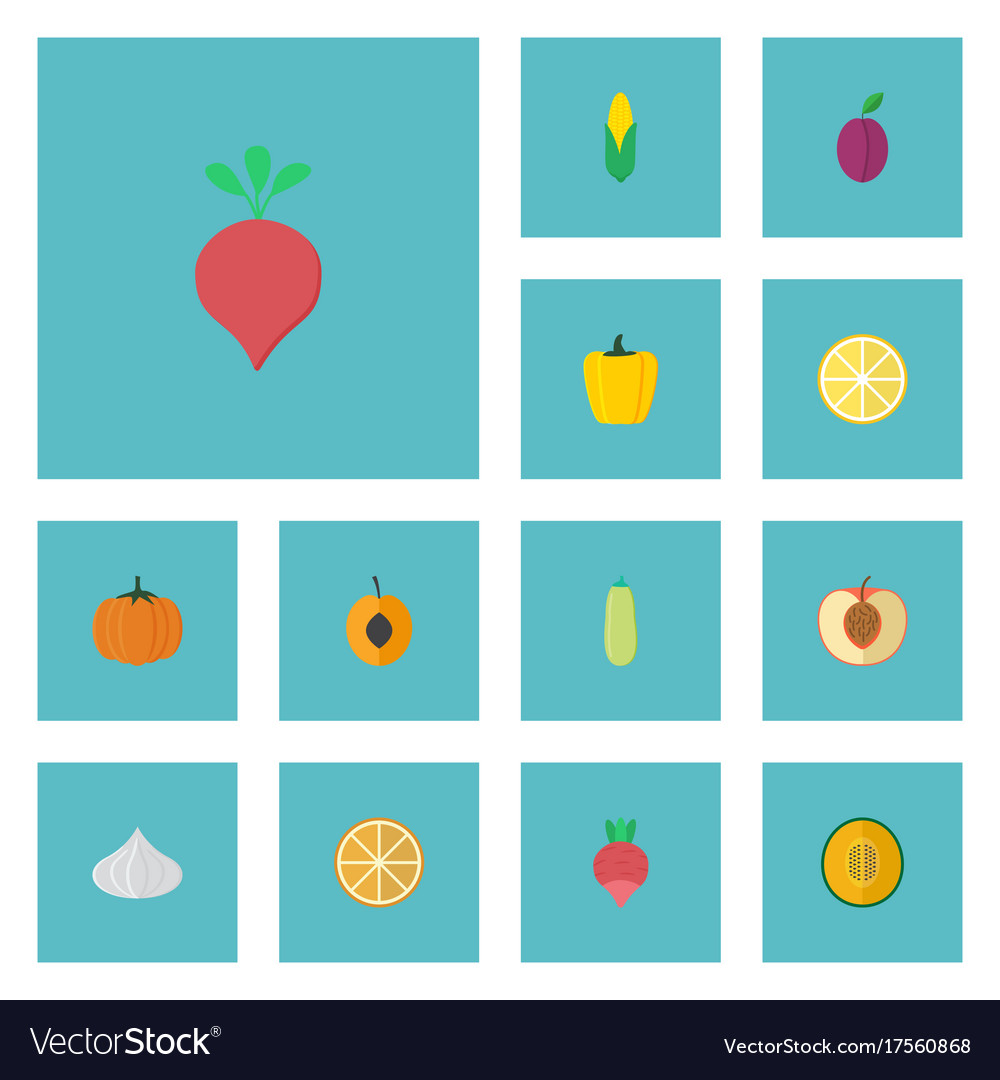 Flat icons peach gourd bulgarian bell and other