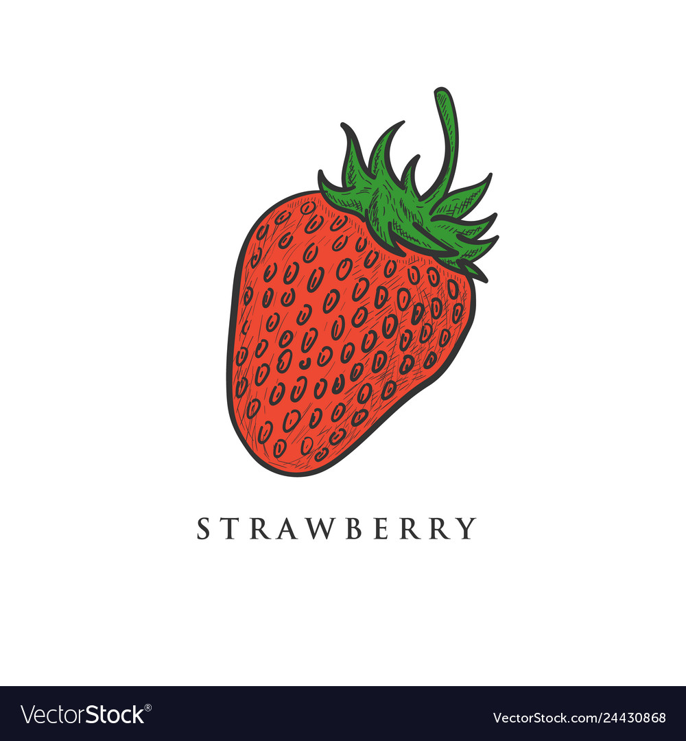 Hand drawn strawberry designs