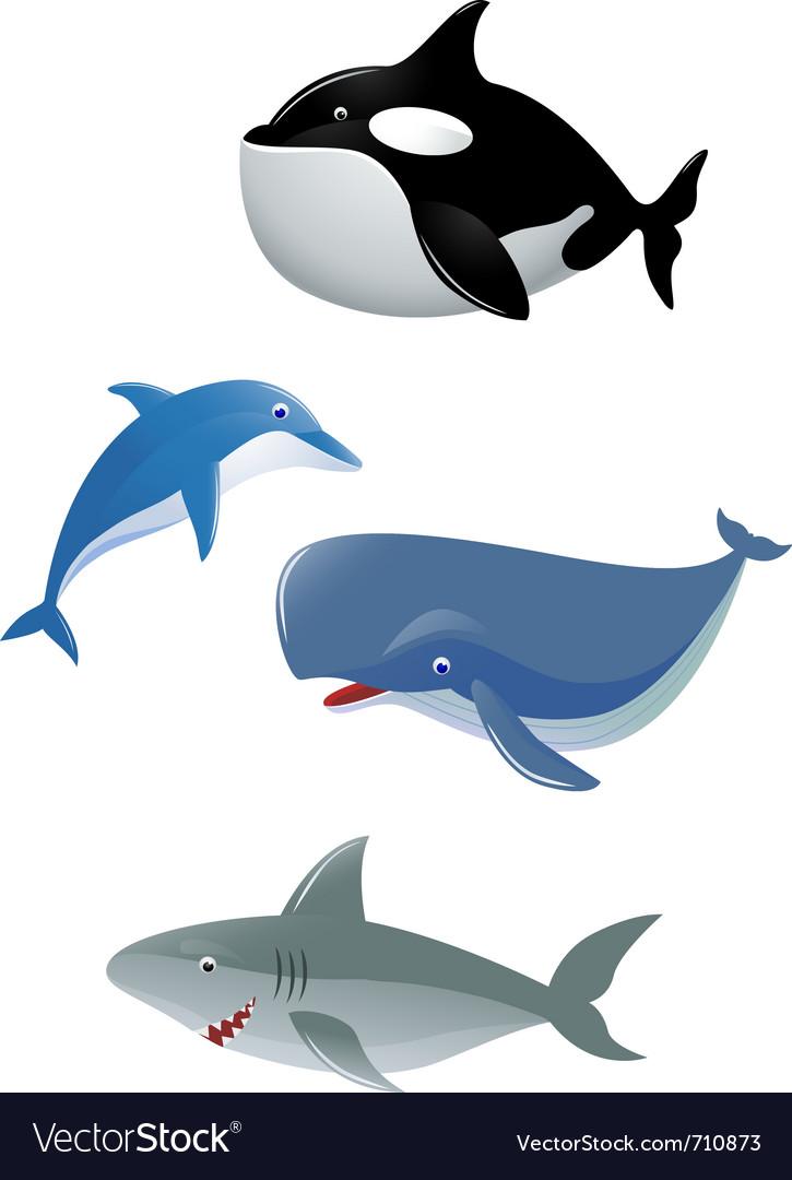 Sea animal collection vector image