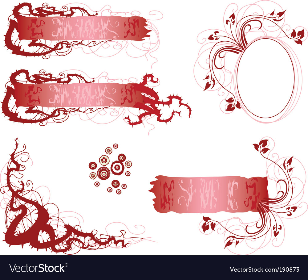 Thorns and flowers vector image
